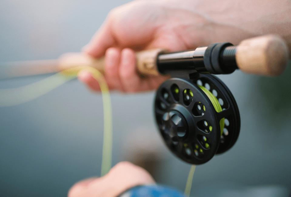 Castria Studios fishing