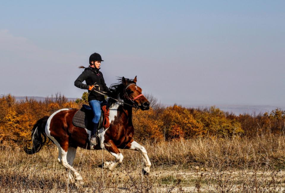 horse riding Tinos Castria Studios