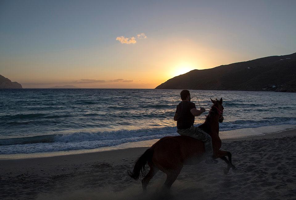 tinos horse riding